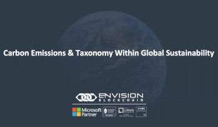 Carbon Emissions & Taxonomy Within Global Sustainability