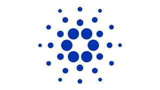 Keep up to date with the Cardano network roadmap